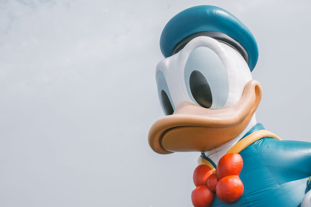 what is duck typing?